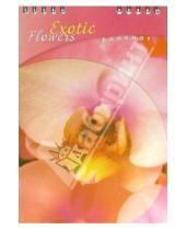 Картинка к книге КТС-про - Блокнот А5 48 листов (клетка) /С2851 Орхидея (пружина)