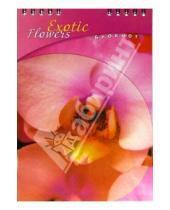 Картинка к книге КТС-про - Блокнот А5 48 листов (клетка)/С2850 Лилия