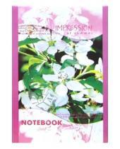 Картинка к книге КТС-про - Блокнот А5 32 листа С10150 Вишня