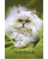 Картинка к книге Канцелярские товары - Notebook А5 112л. 3809 Rachael Hale Cinkerbell