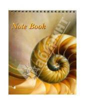 Картинка к книге Лотос - Блокнот А5 60 листов (L-62-025) Ракушки евроспираль