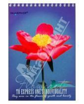 "Картинка к книге Silwerhof - Блокнот 48 листов ""Цветы"" (731021-25)"