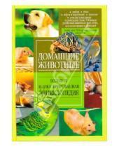 Картинка к книге АСТ - Домашние животные. Большая иллюстрированная энциклопедия