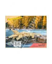 Картинка к книге Животные - Крокодил (M013A)