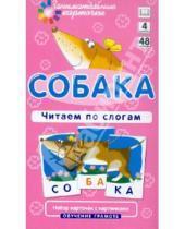 """Картинка к книге А. А. Штец - Набор из карточек """"Собака. Читаем по слогам. Обучение грамоте"""""""