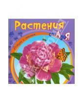 Картинка к книге Азбука с чтением - Растения от А до Я