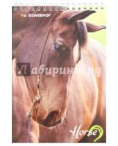 """Картинка к книге Silwerhof - Блокнот на гребне """"Лошади"""" (48 листов, А5, клетка) (731156-25)"""