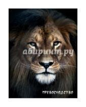 "Картинка к книге Блокнот настоящего хищника - Блокнот настоящего хищника ""Лев"""