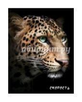 "Картинка к книге Блокнот настоящего хищника - Блокнот настоящего хищника ""Гепард"""