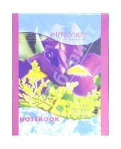 Картинка к книге КТС-про - Блокнот А5 32 листа (клетка) (Ирис) /С10151