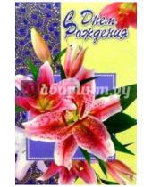 Картинка к книге Стезя - Открытка вырубка/6Т-012/Поздравляю
