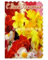 Картинка к книге Стезя - 5-040/День рождения/открытка-вырубка двойная