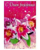 Картинка к книге Стезя - 5-041/День рождения/открытка-вырубка двойная