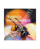 Картинка к книге Светлана Белорусцева Владимирович, Андрей Сочивко - Чудеса микромира
