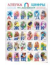 Картинка к книге Антураж - Азбука и цифры на магнитах