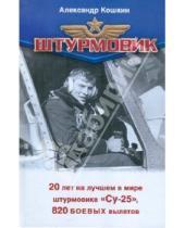 Картинка к книге Евгений Зубарев Александр, Кошкин - Штурмовик