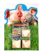 """Картинка к книге Набор с печатями (3шт в блистере) - Набор штампов """"Свиньи"""", 3 штуки в блистере (11932)"""