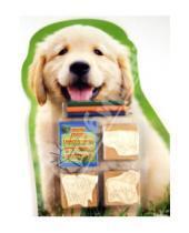 """Картинка к книге Набор с печатями (3шт в блистере) - Набор штампов """"Собака"""", 3 штуки в блистере (11935)"""