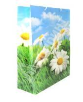 """Картинка к книге TUKZAR - Пакет подарочный """"Цветы"""" (TZ 9544)"""