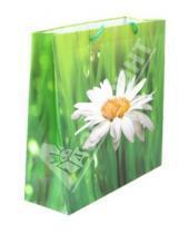 """Картинка к книге TUKZAR - Пакет подарочный """"Цветы"""" (TZ 9548)"""
