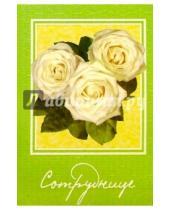 Картинка к книге Открыткин и К - 5Т-002/Сотруднице/открытка двойная