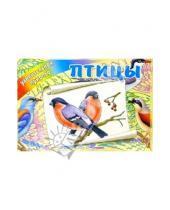 Картинка к книге Литера - Птицы