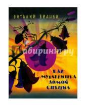 Картинка к книге Валентинович Виталий Бианки - Как муравьишка домой спешил