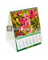 Картинка к книге Календарь настольный 120х140 (домики) - Календарь настольный на 2016. Домик. Цветы (10604)