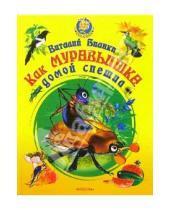 Картинка к книге Валентинович Виталий Бианки - Как муравьишка домой спешил. Сказки