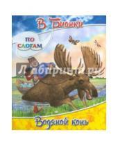 Картинка к книге Валентинович Виталий Бианки - Водяной конь