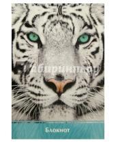 "Картинка к книге Феникс+ - Блокнот ""Взгляд тигра"" (А5, 60 листов) (41135)"