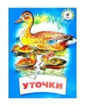 Картинка к книге Дмитриевич Константин Ушинский - Уточки