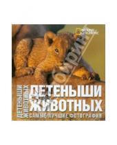 Картинка к книге Серена Анджела Ильдос - Детеныши животных. Фотоальбом