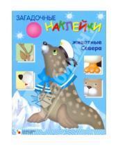 Картинка к книге Виктор Мороз Леонидовна, Лариса Бурмистрова - Загадочные наклейки. Северные животные