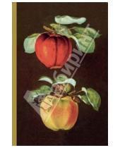 """Картинка к книге Блокноты - Блокнот """"Ботаника"""". Яблоки"""